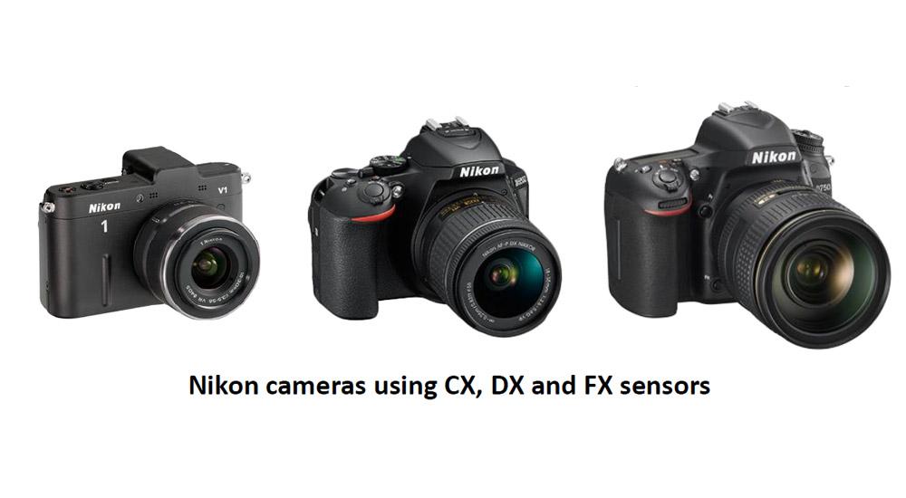 Understanding Nikons Cx Dx And Fx Sensor Formats - Nikon School Blog