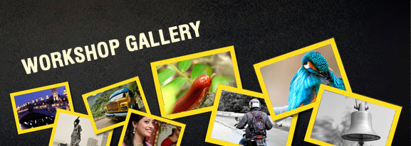 Photography Workshop Gallery